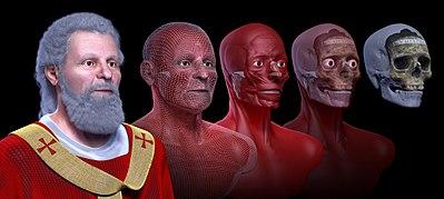 Reprodução de uma reconstrução facial de um homem, à esquerda, a partir do seu crânio, à direita, passando por mais três imagens, com a implantação de músculos, pele e outros detalhes.