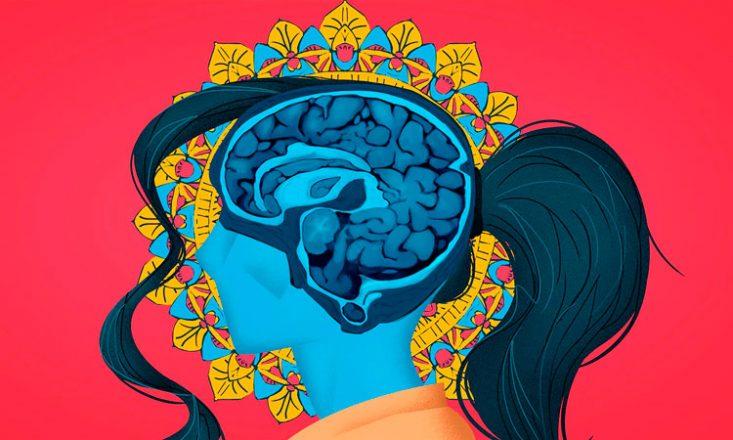 Ilustração da cabeça de uma mulher com foco nos vasos cerebrais, representados aqui na cor azul escuro. O rosto dela está em azul claro. Imagem está dentro de um retângulo vermelho.
